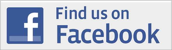 Facebook-Sayfası