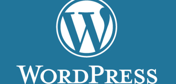 18 Milyon WordPress Blogu Artık iPad Formatında