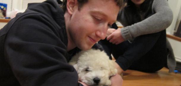 Zuckerberg'in Köpeğini Merak Eden?