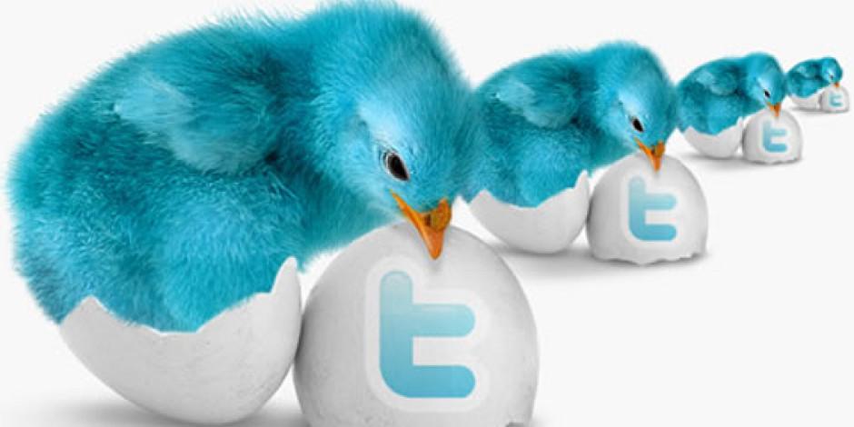 Artık Twitter'da da Marka Sayfaları Olacak