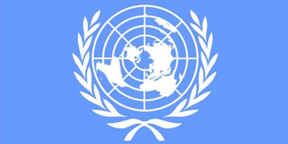 Birleşmiş Milletler: İnternet Erişimi İnsan Hakkıdır