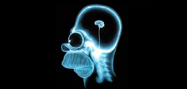 Facebook Beynimizin Yapısını mı Değiştiriyor?