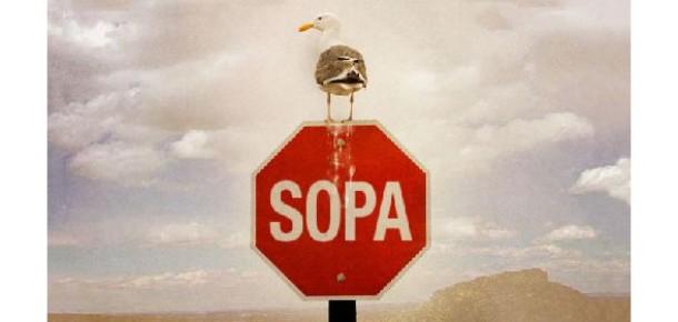 Facebook, Twitter ve Google SOPA'yı Nasıl Protesto Etti?