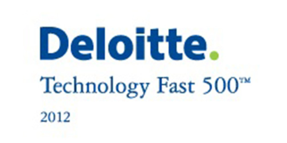 Deloitte Fast500 Listesinde Türkiye'den 29 Şirket Yer Aldı