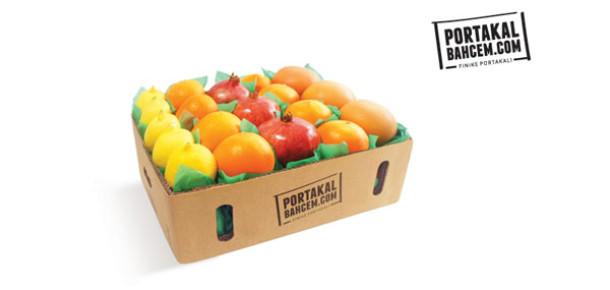 Portakalbahcem.com: Finike'nin Portakal Bahçeleri Bir Tık Uzağınızda
