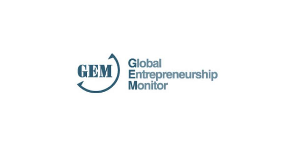 Türkiye'nin Girişimcilik Notu 2012 Yılında Artış Gösterdi