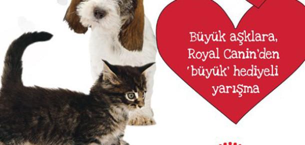 Royal Canin Facebook Yarışmasıyla Hayvan Sevgisine Dikkat Çekiyor