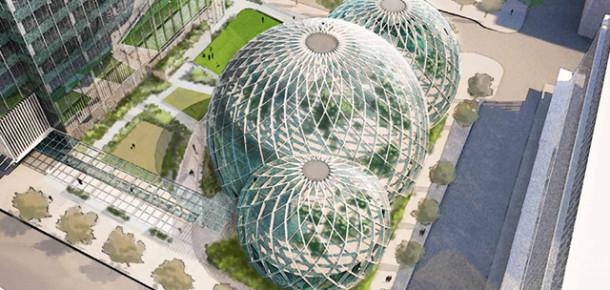 Amazon'un Yeni Kampüsü Belli Oldu: Sera Kampüs