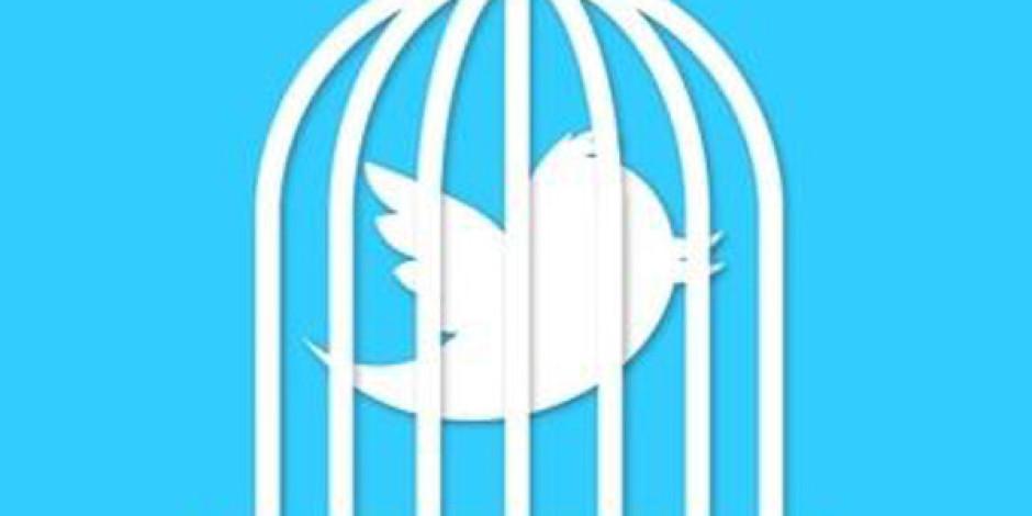 Gezi Parkı İle İlgili Twitter Gözaltıları Başladı