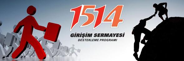 1514 Girişim