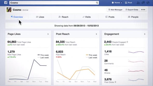 Facebook Sayfa İstatistikleri