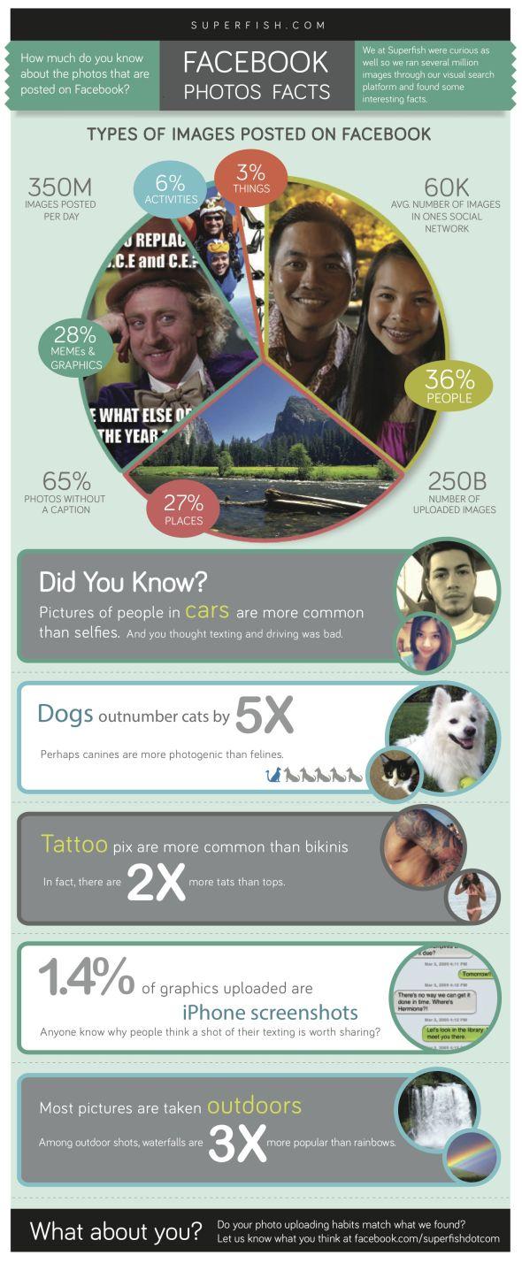 Facebook Görseller infografik