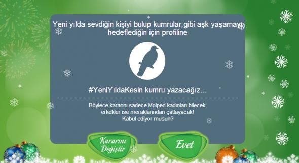 Yeni-Yilda-Kumru