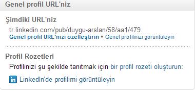 LinkedIn-Profil-Duzenle