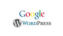 Google AdSense ve Webmaster Tools'u WordPress'e Taşıdı