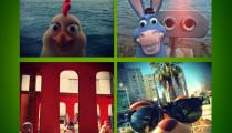 Garantili Dostlar Instagram'da Selfie Çekiyor