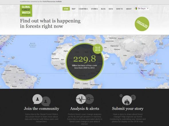 Dünyadaki Orman Katliamlarını Gözler Önüne Seren Platform: Global Forest Watch