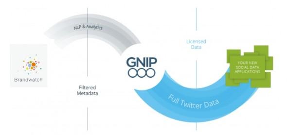 gnip+bw