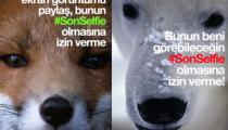 En Anlamlı Selfie Kampanyası WWF Türkiye'den: #SonSelfie