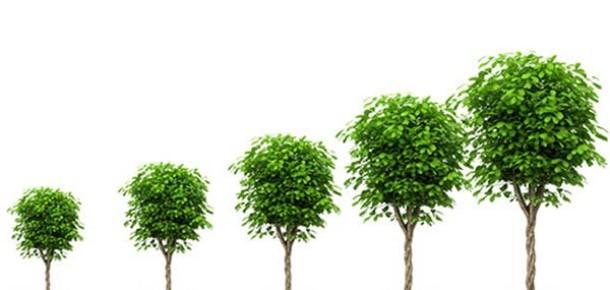Blog Tüyoları: Okuyucularınızı Artırmak İçin Başvurabileceğiniz 6 Taktik