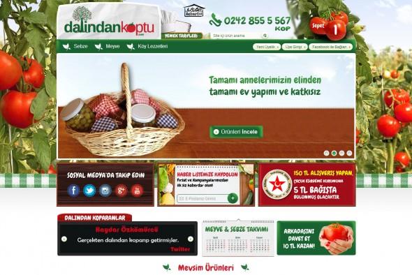Dalindankoptu.com