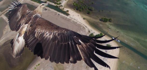 Dronestragram 2014'ün en iyi drone fotoğraflarını seçti