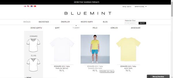 bluemint3