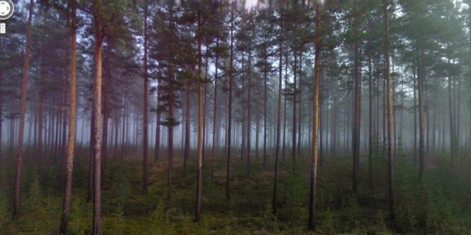 Google Street View kameralarına takılan birbirinden güzel görüntüler