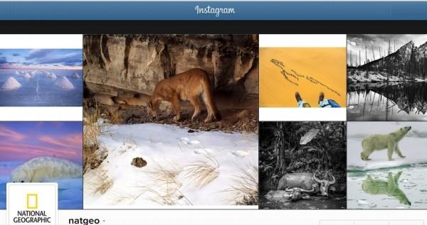 Instagram'ın hakimi olan 6 önemli marka