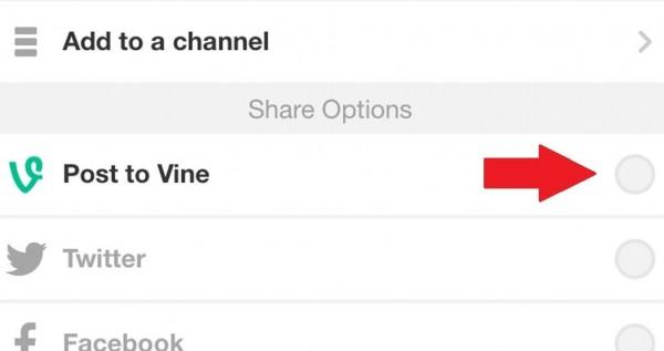 vine-video-kaydetme