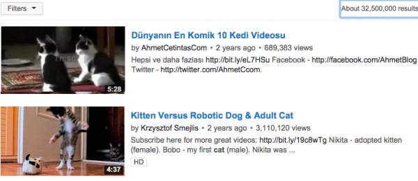 kedi-youtube-600x260