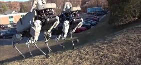 google-robot-bd