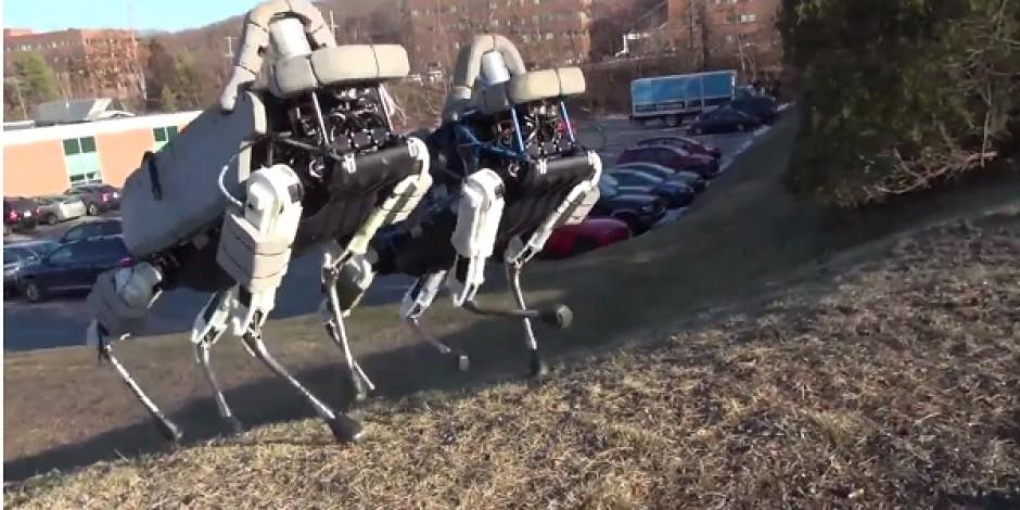 Google'ın sahibi olduğu Boston Dynamics'ten şaşırtan ve ürperten yeni robotlar