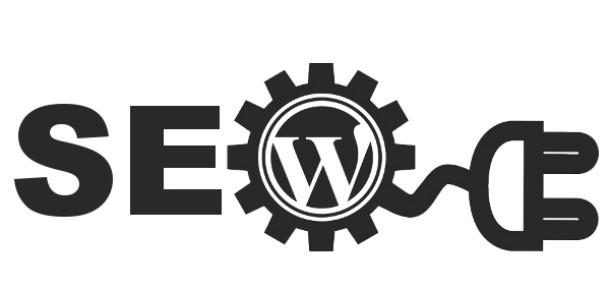 10 soruda WordPress ile SEO arasındaki ilişki