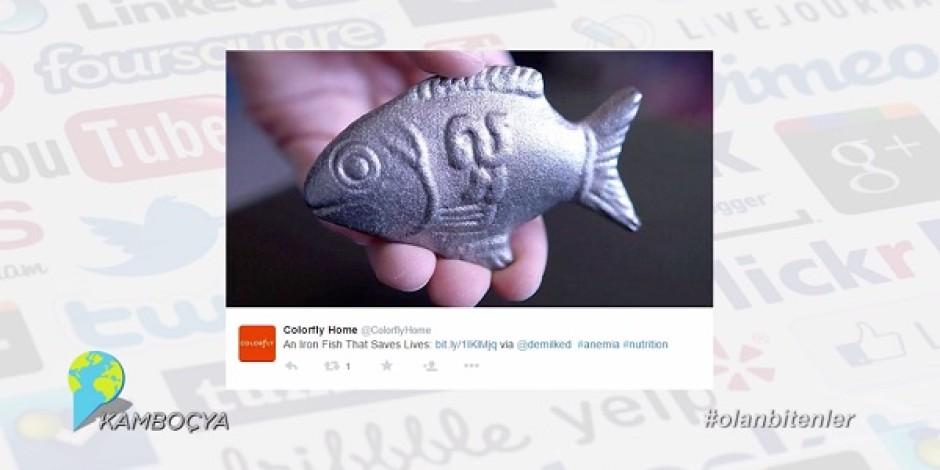Kansızlık problemine çözüm olacak demir balıklar ile Sosyal Medya'da #olanbitenler