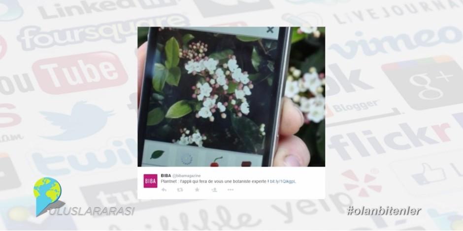 Bitkileri fotoğraftan tanımlayan mobil uygulama ile birlikte Sosyal Medya'da #olanbitenler [video]