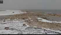 Google Street View'den iklim değişikliklerinin etkilerini gösteren sosyal sorumluluk