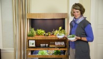 """Kendi yiyeceklerinizi evinizde yetiştirmenizi sağlayan Futuristik bir """"bahçe"""""""