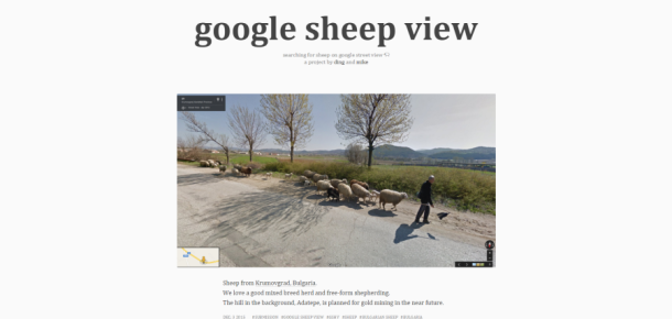 Google Street View'dan ilham alan proje Google Sheep View