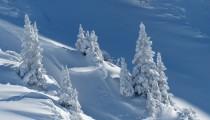 Markaların kar ile ilgili gerçek zamanlı içerikleri