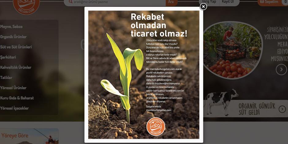 Memlekettengelsin.com'dan Tazedirekt.com'a tatlı çağrı