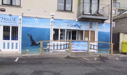 seal-crosses-road-seafood-restaurant-sammy-ireland-7