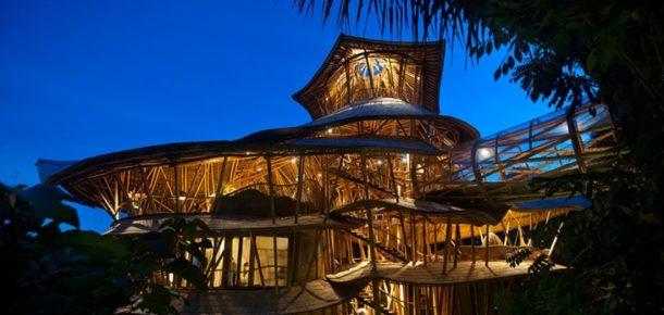 Bambudan evler yapmak için Bali'ye taşınan kadın
