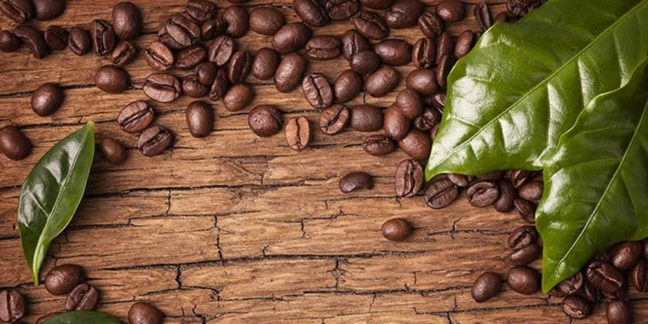 Kahve hakkında bilmeniz gerekenler