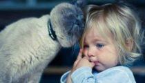 Çocukların kedilere ihtiyacı olduğunu gösteren 20 fotoğraf