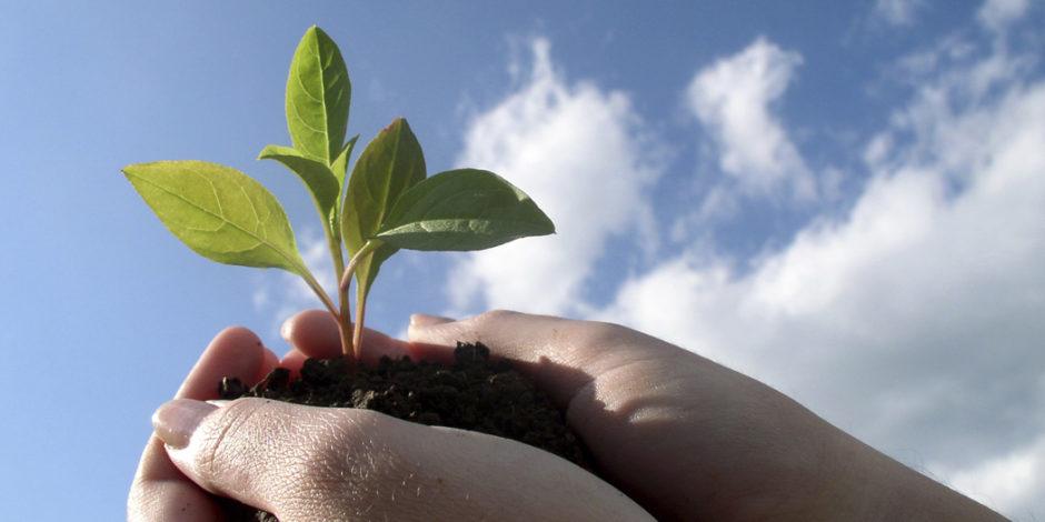 Sosyal sorumluluk sahibi bir şirket olabilmek için izlemeniz gereken 3 yol
