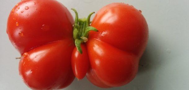 Şekilden şekile girmiş birbirinden komik meyve ve sebze