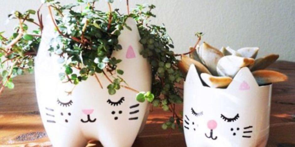 Sıradan şişeleri kullanarak oluşturabileceğiniz 15 havalı dekorasyon fikri