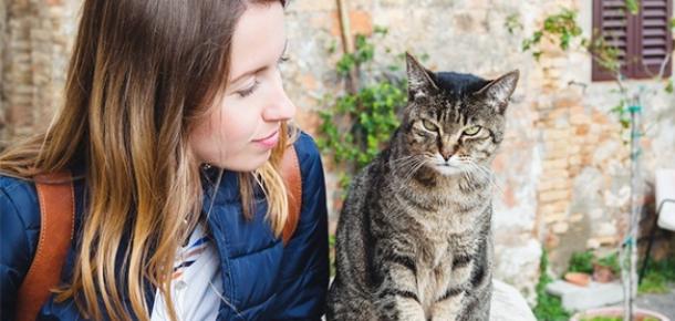 Araştırmalar, kedi insanlarının yalnız ve mutsuz olduğunu söylüyor