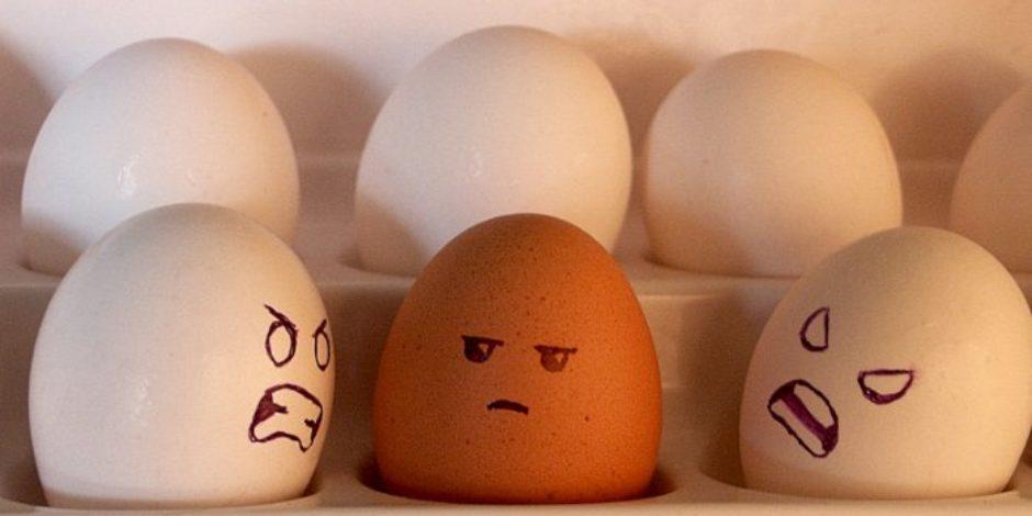 Kimden nefret ettiğiniz, ne kadar zeki olduğunuzla alakalı